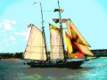 Sunny Sail 14x11