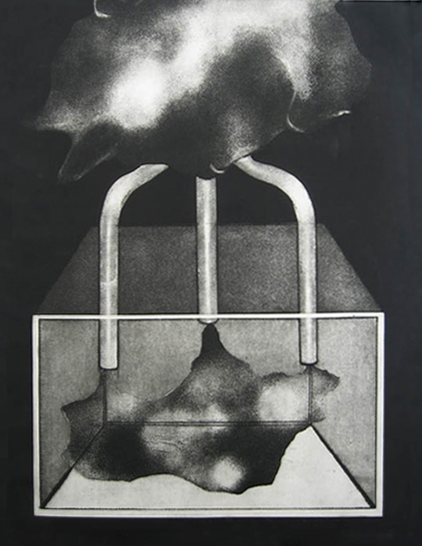 6.Turley,Pasha The Pollution Makers Intaglio etching 30x40